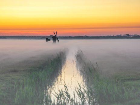 Weidemolen in Waalenburg. ILOVETEXEL 10-2020, eigendom justinsinner.nl